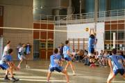 Volley Pays Viennois - Francheville
